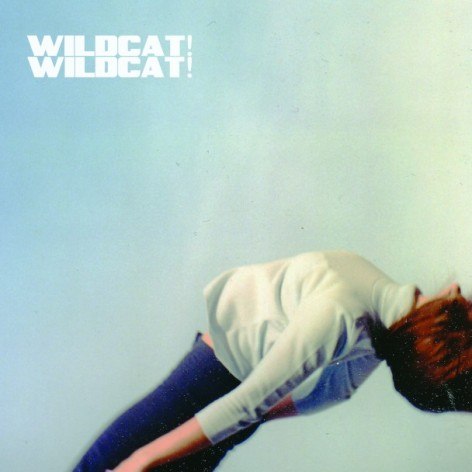 Wildcat-Wildcat-608x608